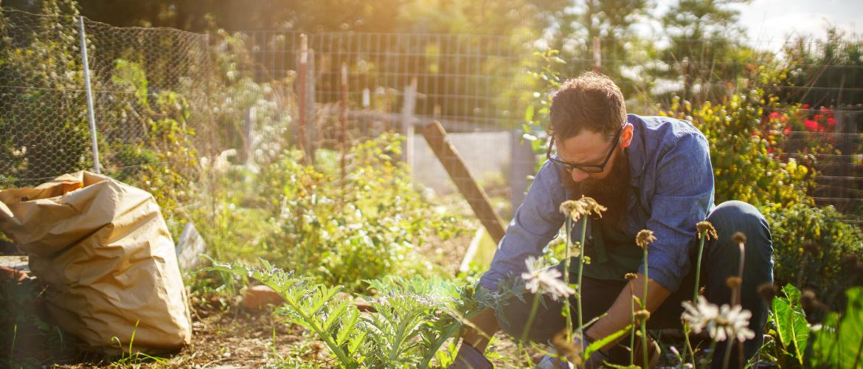 les produits de jardin