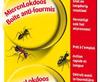 Protéger contre les pucerons et les fourmis