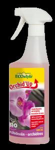 OrchidUp entretien et soin pour orchidées
