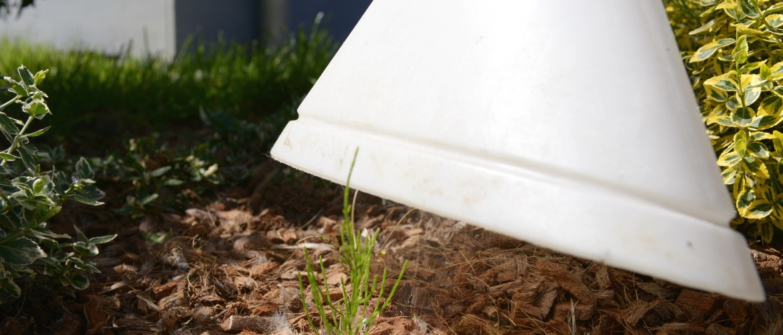 Ultima PRO attaque tous les mauvaises herbes et mousses en trois heures